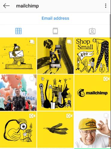 Mailchimp-Brand-Elements